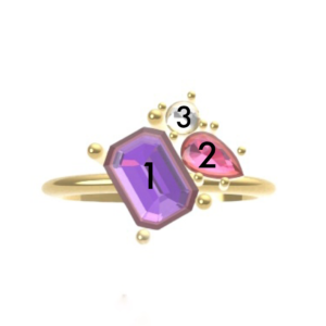 anillo ara personalizado